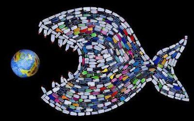 Bay Skips provides skips for The Big Plastic Fish Contest!