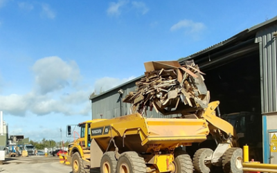 Wood Collection from Bay Skips and EMS in Torbay